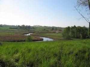 Krajobraz przy Hotelu SAK nad Łyną widok na pola i zielone łąki z rzeką.
