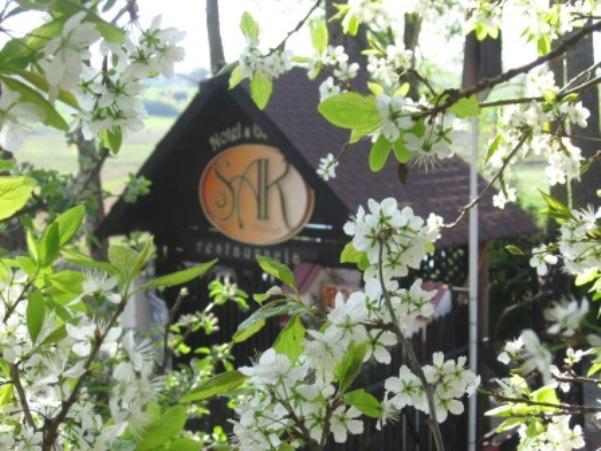 SAK Hotel Olsztyn Restauracja Noclegi tanio Daszek na wjeździe z logo.