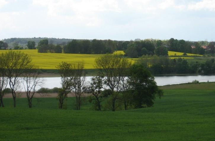 Jezioro Bartąg Okolica Olsztyna