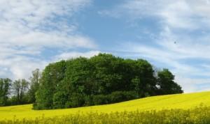 Kolory Natury Warmia i Mazury