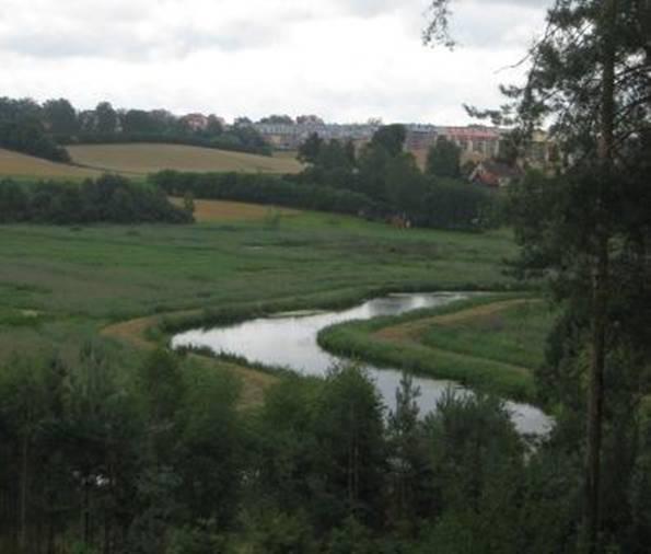 Rzeka Łyna płynie w kierunku Olsztyna