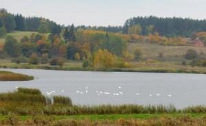 Jesień w okolicy Olsztyna rekreacyjny teren