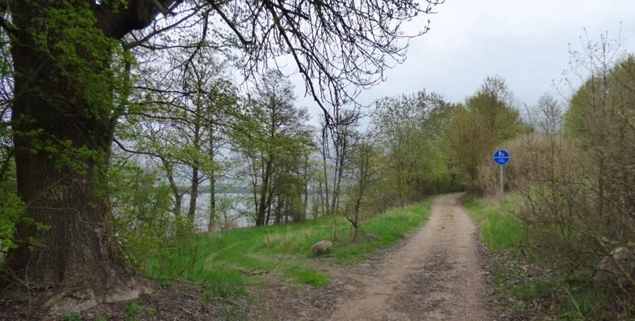 Trasa Rowerowa Nad Jeziorem Koło Olsztyna